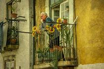 Lisboa Pondering  by Rob Hawkins