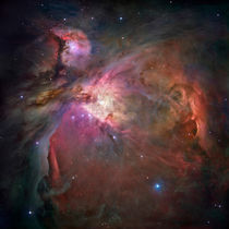 The Orion Nebula von Stocktrek Images