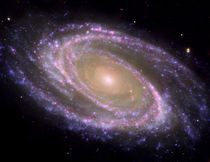 Spiral galaxy Messier 81. by Stocktrek Images