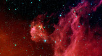 Young stars emerge from Orion's head. by Stocktrek Images
