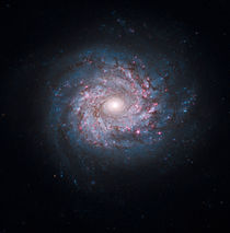 Face-on spiral galaxy NGC 3982. by Stocktrek Images