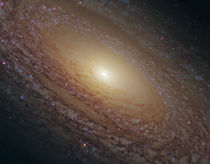 Spiral Galaxy NGC 2841 by Stocktrek Images