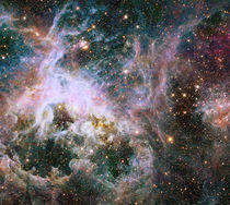 Star formation in the Tarantula Nebula. by Stocktrek Images