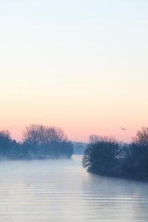 Bremen : Morgennebel an der Weser by Torsten Krüger