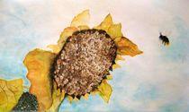 Human-sunflower