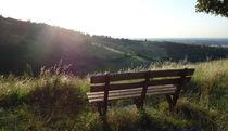 View of Bologna's hills  by Azzurra Di Pietro