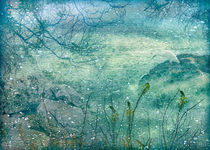 Memories of a Dream Nature Photo Collage by Daniel Ferreira Leites Ciccarino