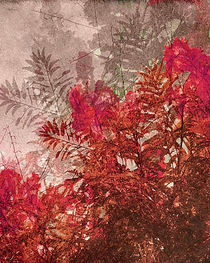 Decorative Leaves Photo Collage by Daniel Ferreira Leites Ciccarino