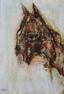 Horse with no Name by Werner Winkler