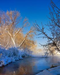 Feeling of spring in Russia by Yuri Hope