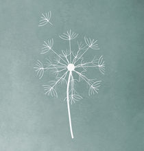 Dandelion2-original