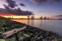 Hamburg Hafen Altenwerder Elbe von Dennis Stracke
