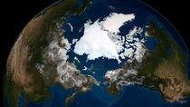 Arctic sea ice. von Stocktrek Images