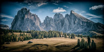 Alpe di Siusi 2773 von Mario Fichtner
