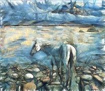 White Horse, the Dead Sea,,,,  White by ben rotman