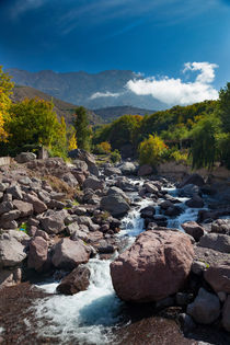 View of stream, Toubkal, High Atlas Mountains von kytefoto