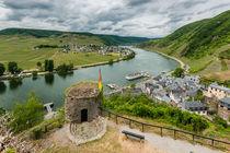 Burg Metternich - Vorburg und Mosel von Erhard Hess