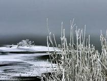 Winterstille am See von J. Peter Kaschuba