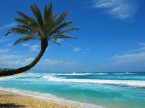 Urlaub in Hawaii by Marita Zacharias