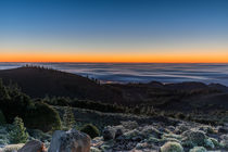 Morning Glow, Gran Canaria by Moritz Wicklein