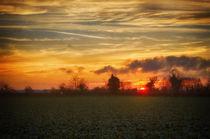 Sundown-allot-hdr2
