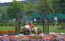 Park Life by Rod Johnson