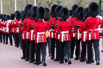 Grenadier Guards by David Pyatt