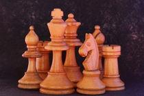 antike Schachfiguren von Gisela Peter