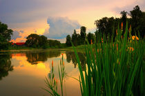Summer evening the pond von Yuri Hope
