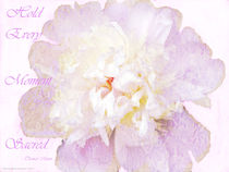 Such a Pretty Peony - Inspirational Quote by Gena Weiser
