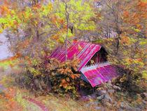 Old-barn-beneath-new-trail