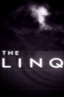 The Linq  by Bastian  Kienitz