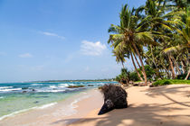 Paradiesische Badebucht im Süden Sri Lankas von Gina Koch