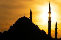 Istanbul Moschee von Borg Enders