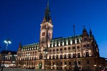 Hamburger Rathaus am Abend von Borg Enders