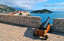 Alte Kanone auf der Burg by Dejan Knezevic