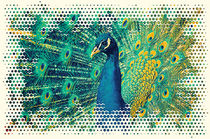 Pfau Art von AD DESIGN Photo + PhotoArt