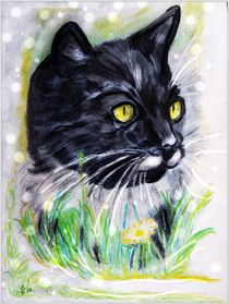 '~~ Black Cat Portrait ~~' by Sandra Vollmann