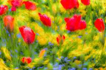 English Summer Flowers Pastel Art von David Pyatt
