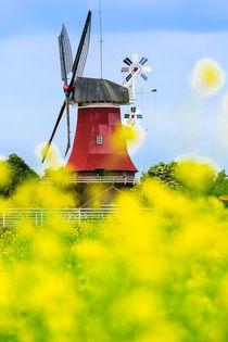 Windmühle in Greetsiel von renard