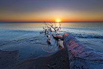 Weststrand am Abend by Borg Enders
