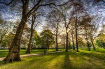 Green Park London by David Pyatt