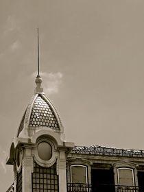 Reaching for the sky von Luis Pedro Aguiar