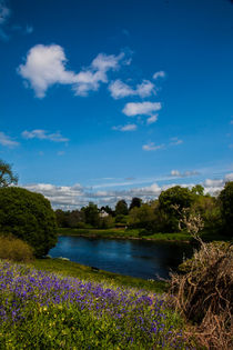 Banks of River Tay near Ballathie by Les Mitchell