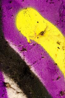 Ausschnitt-aus-einem-graffiti-6140