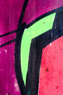 Ausschnitt-aus-einem-graffiti-6142