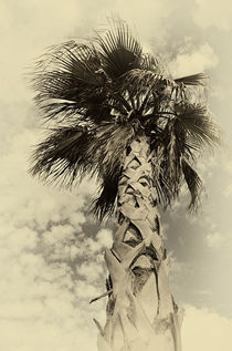 'Palme ' von Peter Bergmann