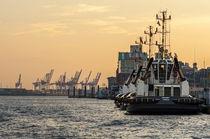 Hafenbootekraene