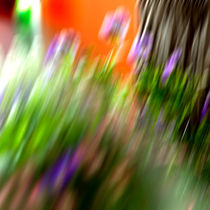 Flowers-in-motion