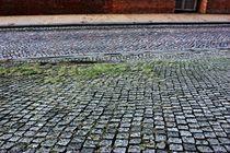 Pflastersteinvielfalt - cobblestone von Martina Lender-Frase